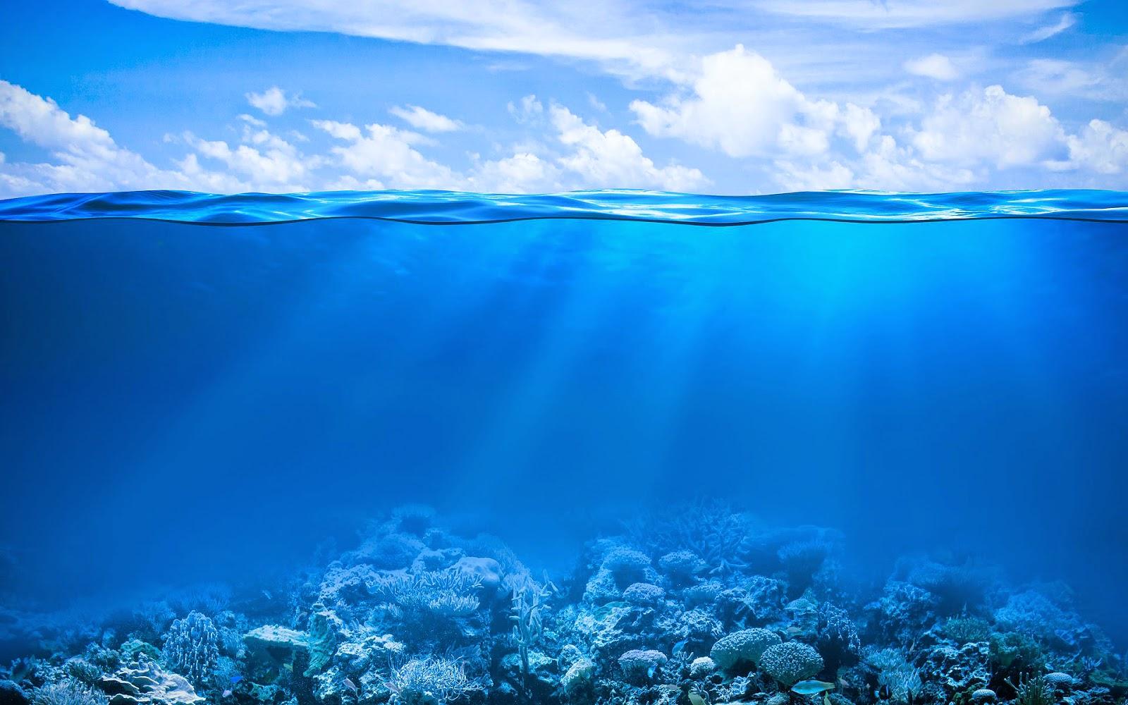 Meer Unterwasser